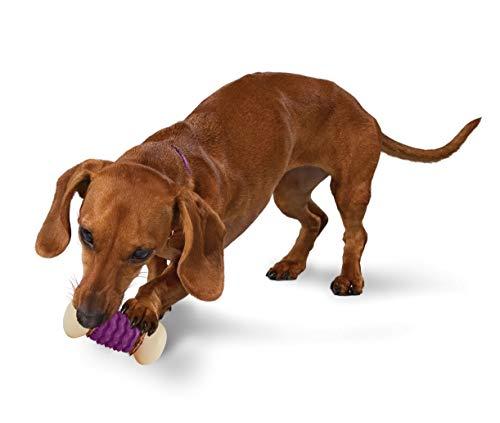 Nobbly Nubbly Dog Toy, Extra Small ()