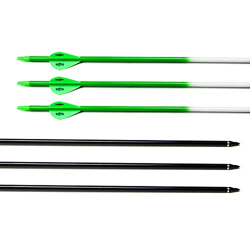 31 inch arrows dozen carbon - 4