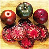 Premier Seeds Direct ORG107 Tomato Black Krim Organic Seeds (Pack of 50)