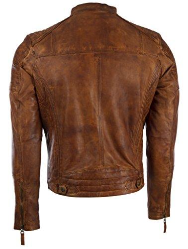 Aviatrix Nevada Disegno Uomo In Da Motociclista Laterale Con vo3w E Timber Pelle Giacca Vera Spalla q8qarnOSB