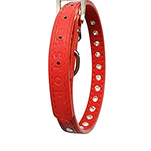 Pet's House Dog Collars for Small Dogs Prime (XS, Red)