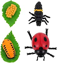 Yardwe 4Pcs Insect Ladybug Growth Cycle Figurine Ladybird Life Cycle Model Shows Life Cycle of A Cute Ladybug
