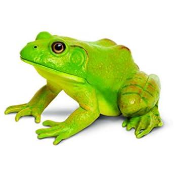 amazon com safari ltd incredible creatures american bullfrog toys
