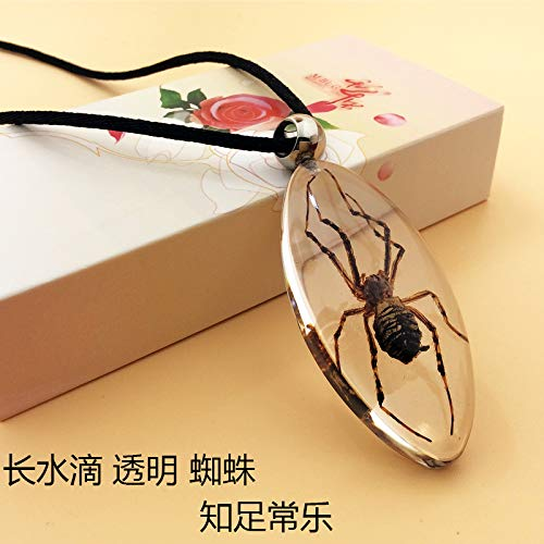 insect specimens jewelry creative couple gifts for children men women students counters scorpion necklace pendant chain amber (long transparent water droplets spider pendant ()