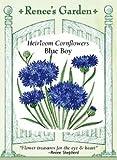 Cornflower, Blue Boy, Heirloom