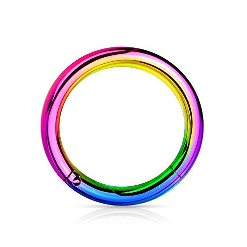 (Hinged Segment Rings-316L Surgical Steel-Titanium Anodized Precision (Sold Individually))