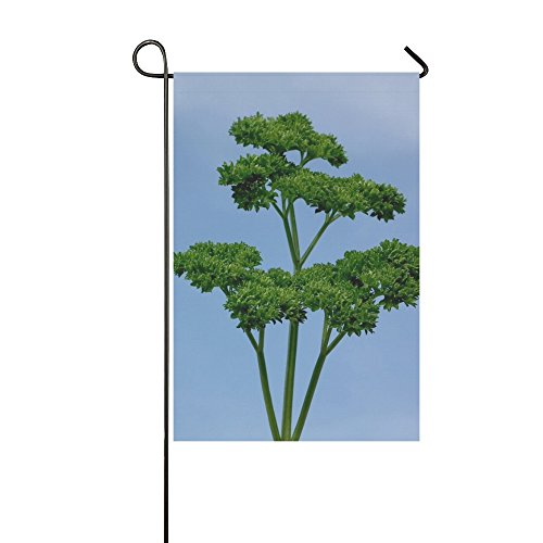 Home Decorative Outdoor Double Sided Parsley Green Seasoning Greens Salad Leaves Food Garden Flag,house Yard Flag,garden Yard Decorations,seasonal Welcome Outdoor Flag 12 X 18 Inch Spring Summer Gift ()