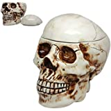 Pacific Giftware 8 Inch Skeleton Skull Shaped Ceramic Cookie Jar Statue Figurine