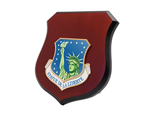 US Air Force USAF 48th Fighter Wing ( 48 FW ) Shield (48th Fighter)