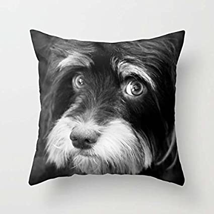 """Manta funda de almohada de perros 16 x 16 """"/40 por 40 cm"""