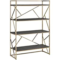 Furniture of America Tisa Modern 4 Shelf Bookcase, Champagne