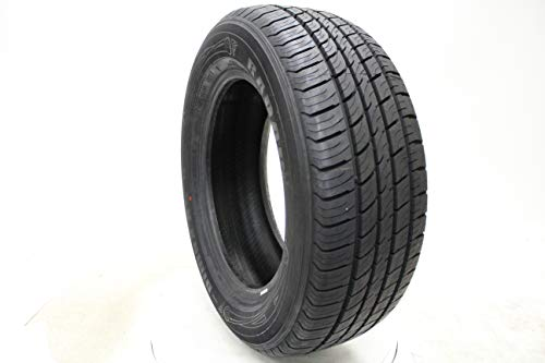 RADAR Dimax AS-8 All- Season Radial Tire-225/50R17 ()