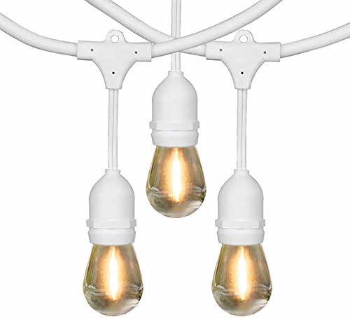 Feit Electric 48 LED Filament String Light Set