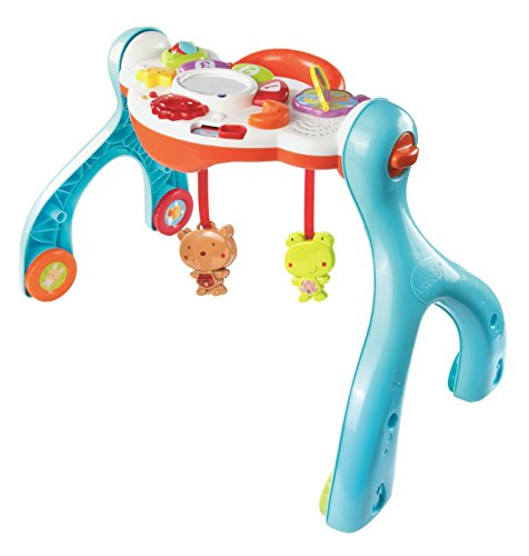 VTech Lil' Critters 3-in-1 Baby Basics Gym (Discontinued by manufacturer)