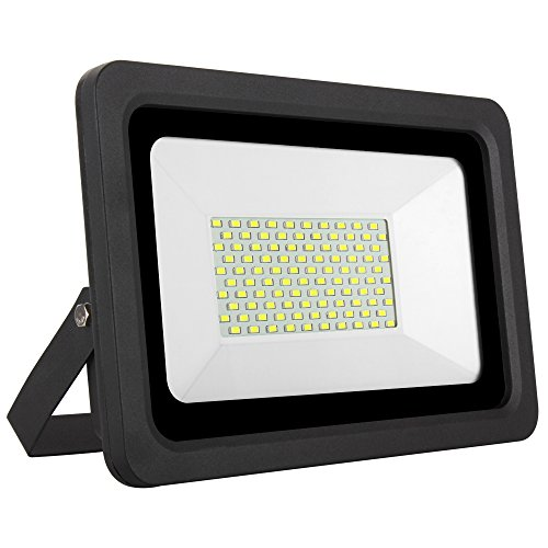 Indoor Flood Light Bulb Reviews in Florida - 8