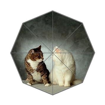 Bonito paraguas plegable para gato o gato de Kawaii con diseño de dibujos animados
