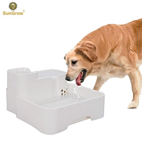 automatic fountain water dish for dogs and cats by SunGrow