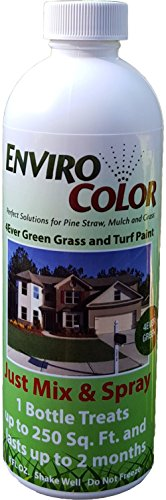 4Ever Green Grass Turf Paint product image