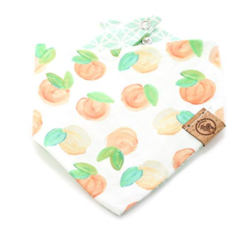 - Dog Bandana Watercolor Peaches Fruit Choice of Bandana Over Collar, Tie on or Snap Size XS-XL