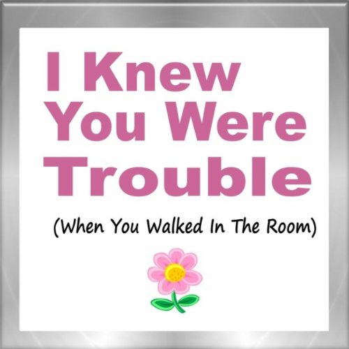 I Knew You Were Trouble (When You Walked In The Room)