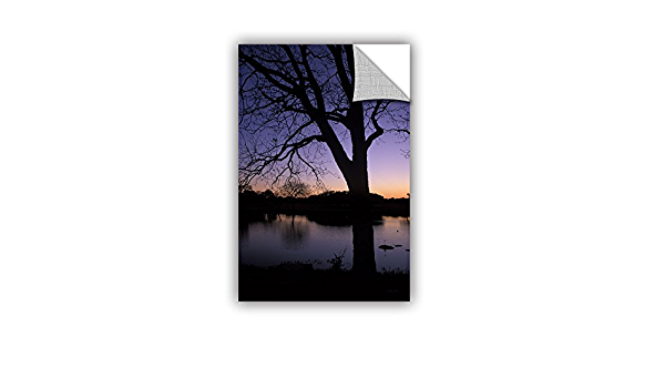 Artwall Kathy Yates Texas Sunset On The Lake Appeelz Removable Graphic Wall Art 16 By 24 Home Kitchen