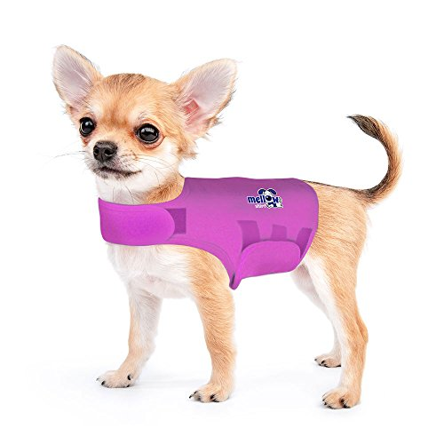 - Mellow Shirt Dog Anxiety Calming Wrap, XX-Small, Radiant Orchid