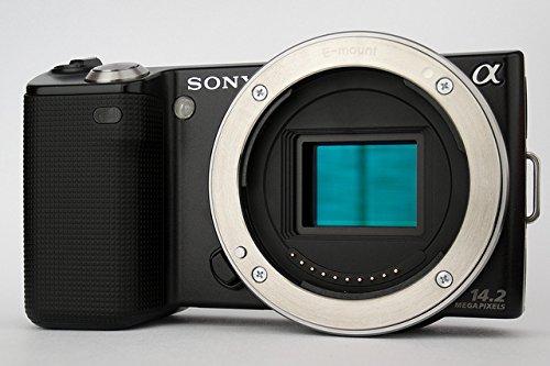 Sony Alpha NEX NEX5 Digital Camera  Black