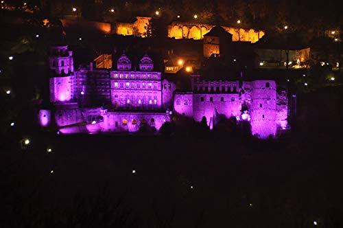 (Home Comforts Laminated Poster Heidelberg Castle Illuminations Castle Heidelberg Vivid Imagery Poster Print 11 x 17)