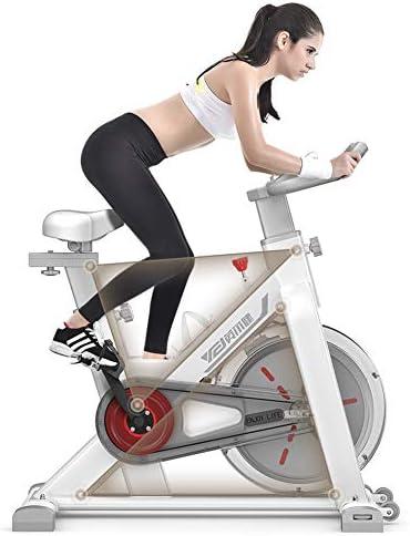 TXDWYF Bicicleta Fitness de Gimnasio Ejercicio/Bicicletas ...