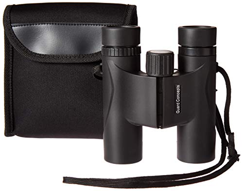 10 x 25 Compact Binoculars for Adults and Kids -New 2019 Design, Great for Golfing, Travel, Outdoor Sports, Site Seeing, Hiking, Bird Watching, Boating