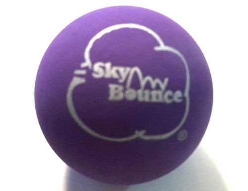 Sky Bounce Color Rubber Handballs for Recreational Handball, Stickball, Racquetball, Catch, Fetch, and Many More Games, 2 1/4-Inch (Light Purple, 12 Count, 6.00, 3.00, 6.00, 14.00, 2.00)