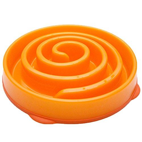 Kyjen Company 2868 Dog Games Coral Bowl Slow Feeder