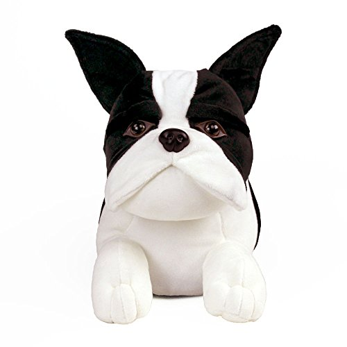 Slippers Boston Boston Terrier Boston Slippers Terrier qtxCYwa1E