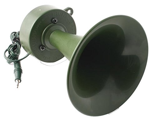 Bird Sound reclamo Trompeta All Duck 60/ W