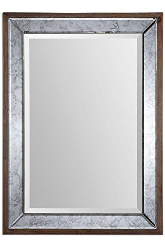 Daria Mirror, 37''Hx27''Wx1.5''D, ANTIQUED MIRROR by Home Decorators Collection