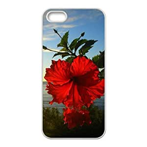 Red Hawaii Flower DIY Cover Case for Iphone 5,5S,personalized phone case ygtg606421