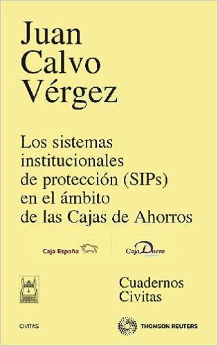 Los Sistemas Institucionales de Proteccion (Sips) En El Ambito de Las Cajas de Ahorros (Spanish) Paperback