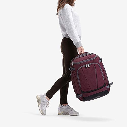 eBags TLS Mother Lode Weekender Junior 19 Inch CarryOn Travel Backpack  Fits Up to 175 Inch Laptop