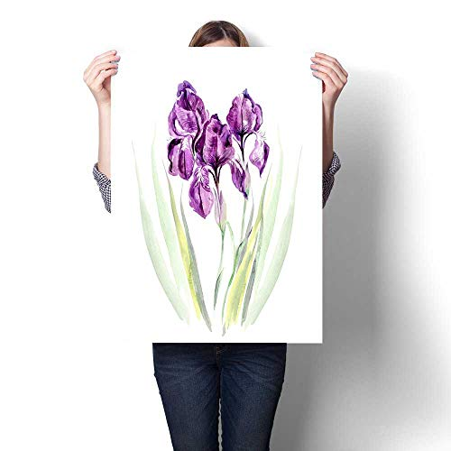 (Anshesix The Picture for Home Decoration Three Purple iris Canvas Art Posters Prints Wall Art)