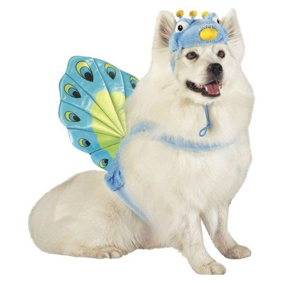Peacock Pet Dog Costume - Size Large - 25 - 50 lbs by Target