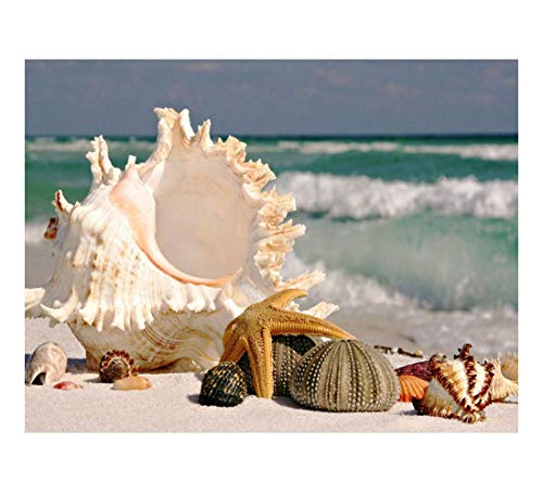 YANEE Diamond Painting Sea Shell Starfish Scenery Full Square Embroidery DIY Cross Stitch Mosaic Paste, Craft kit, Toy Game, Home Decor, Gift, Art, No Frame Style Modern Size 40 x 50 cm