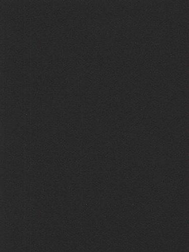 Canson Mi-Teintes Mat Board stygian black 16 in. x 20 in. [PACK OF 5 ()