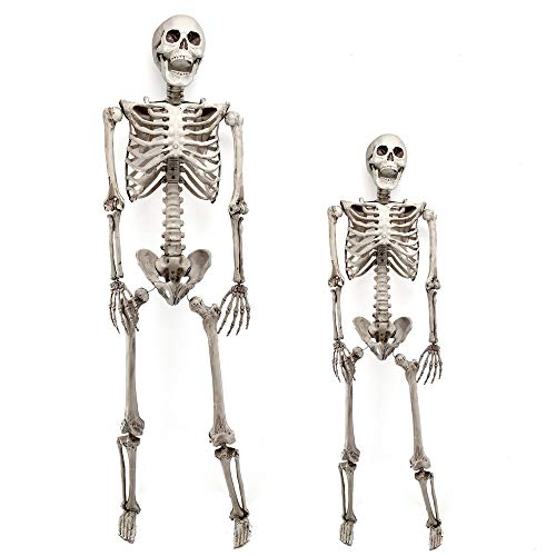 Lucky Monet 90/170cm Halloween Skeleton Posable Full Life Size Skeleton Movable Joints Halloween Party House Hunted Prop Decoration (90cm/3ft) ()
