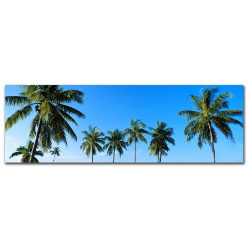 Palms by Preston, 6x19-Inch Canvas Wall Art