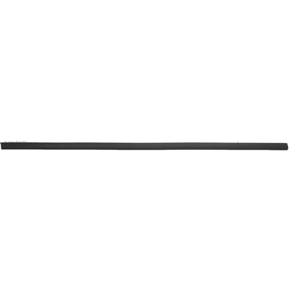 Door Molding for BMW 3-Series 99-06 Front Right Side Right Side