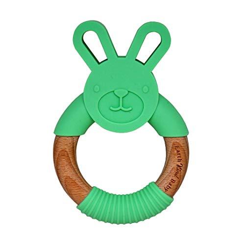 Earth Kind Baby Teething Toy, Organic Eco