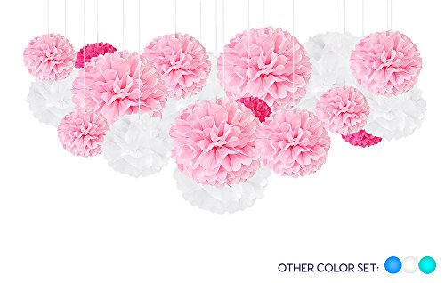 Tissue Paper Pom-Pom Party Decorations - DIY Hanging Puff Flower Balls for Girl Baby Shower, Birthday, Wedding - Princess, Bird, Ballerina, Parisian, Butterfly, Pig, Cowgirl Theme - Pink, White