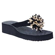2d8e55a7b HD Casual Rubber Flip-Flop Slippers For Women (Black) (FBA  HEEL PHOOL BLACK38)