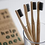 New Launch Special · Eco Toothbrushes by Mother
