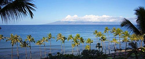 Posterazzi PPI163497L Palm trees on the beach Kaanapali Maui Hawaii USA Poster Print 36 x 12